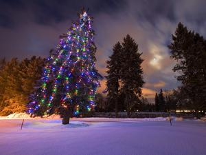 Amazing dusk light and Christmas lights at the Whitefish Lake Golf course in Whitefish Montana by Chuck Haney