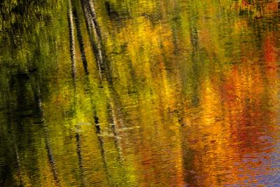 Autumn hues reflect into the Dead River, Marquette, Michigan USA by Chuck Haney