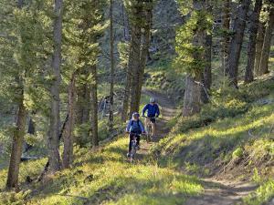 Bangtail Ridge Trail near Bozeman, Montana, USA by Chuck Haney