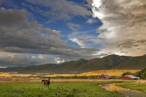 Barn Along Indian Creek and the Whitefish Range, Eureka, Montana by Chuck Haney