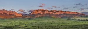 Beef cattle graze below Walling Reef on the Rocky Mountain Front at sunrise near Dupuyer, Montana by Chuck Haney