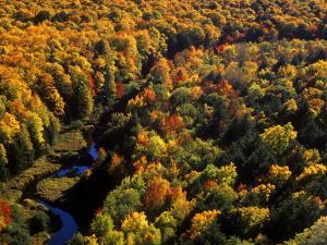 Big Carp River at Porcupine State Park, Up Michigan, USA by Chuck Haney