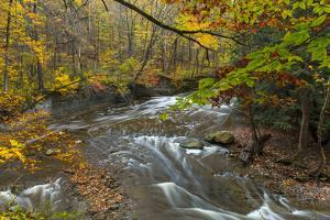 Brandywine Creek Gorge in Autumn in Cuyahoga National Park, Ohio, USA by Chuck Haney