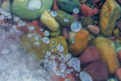 Bubbles in ice, Lake McDonald, Glacier National Park, Montana, USA by Chuck Haney