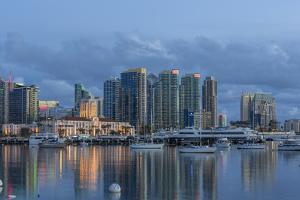 City Skyline from Harbor in San Diego, California, USA by Chuck Haney