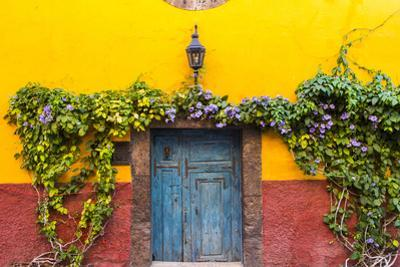 Decorative Doo on the Streets of San Miguel De Allende, Mexico