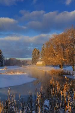 Ducks in wetlands slough with snowy barn, Kalispell, Montana, USA by Chuck Haney