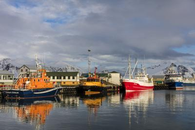 Fishing Vessel in Harbor at Hofn, Iceland