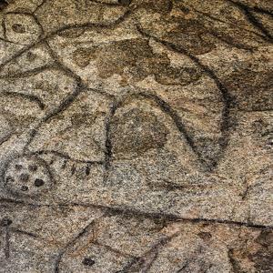 Granite Boulder, Native American Petroglyphs, Writing Rock, North Dakota, USA by Chuck Haney