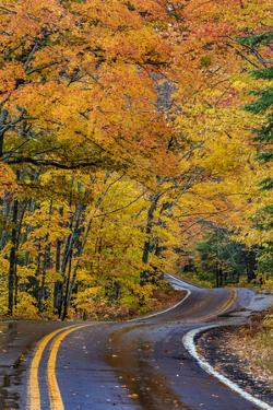 Highway 41 covered roadway in autumn near Copper Harbor in the Upper Peninsula of Michigan, USA by Chuck Haney