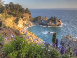 Mcway Falls at Julia Pfieffer Burns State Park Near Big Sur, California, USA by Chuck Haney