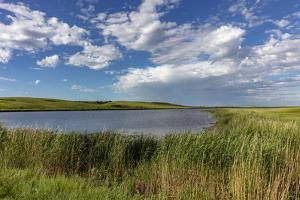 Medicine Lake National Wildlife Refuge, Montana, USA by Chuck Haney