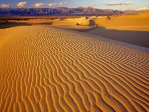 Mesquite Flat Sand Dunes in Death Valley National Park in California, USA by Chuck Haney
