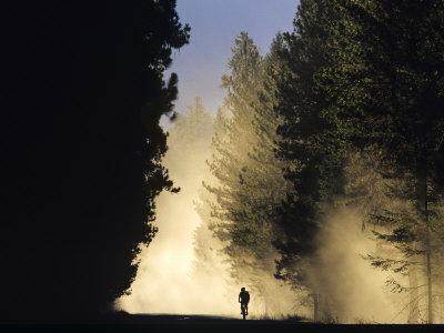 Mountain Biker on a Dusty Road, Swan Valley, Montana, USA