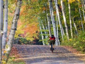 Mountain Biker on Forest Road Near Copper Harbor, Michigan, USA by Chuck Haney
