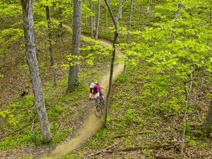 Mountain Biking at Brown County State Park in Indiana, Usa by Chuck Haney