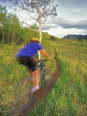 Mountain Biking in the Highwood Mountains, Montana by Chuck Haney
