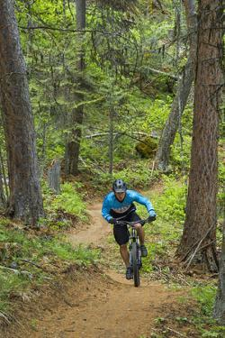 Mountain Biking the Whitefish Trail Near Whitefish, Montana, USA by Chuck Haney
