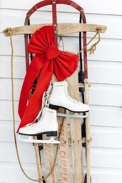 Old fashioned sled with ice skates at Chico Hot Springs in winter in Pray, Montana, USA by Chuck Haney