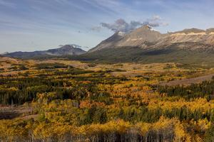 Peak fall color at Marias Pass in Glacier National Park, Montana, USA by Chuck Haney