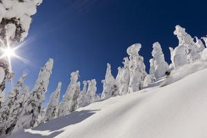 Pete Costain skiing untracked powder at Whitefish Mountain Resort in Montana by Chuck Haney