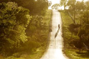 Road Cycling in Texas Hill Country Near Fredericksburg, Texas, Usa by Chuck Haney