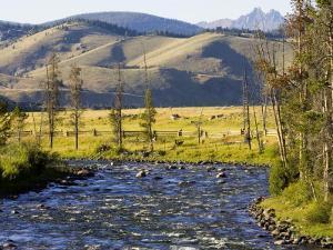 Salmon River near Stanley, Idaho, USA by Chuck Haney