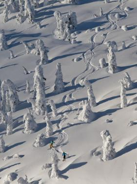 Skiing Through the Snowghosts at Whitefish Mountain Resort, Montana, USA by Chuck Haney