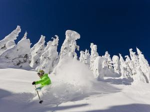 Skiing Untracked Powder on a Sunny Day at Whitefish Mountain Resort, Montana, Usa by Chuck Haney