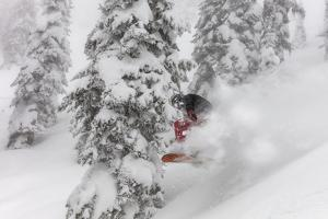 Snowboarding in powder at Whitefish Mountain, Montana, USA by Chuck Haney