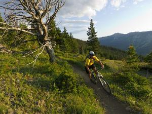 Steve Bjorklund Rides the Singletrack of the Bangtail Ridge Trail Near Bozeman, Montana, Usa Mr by Chuck Haney