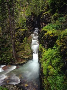 Sunrift Gorge on Baring Creek in Glacier National Park, Montana, USA by Chuck Haney