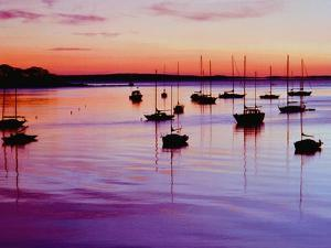 Sailboats Anchored in a Harbor by Cindy Kassab