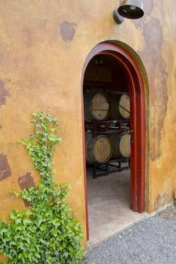 Anyela's Vineyard Winery, Wine Cellar, Skaneateles, New York, USA by Cindy Miller Hopkins