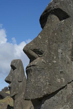 Chile, Easter Island. Rapa Nui, Historic Site of Rano Raraku. Moi Face by Cindy Miller Hopkins