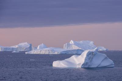 Greenland, Scoresbysund, aka Scoresby Sund, Nordvestfjord. Sunrise over huge icebergs. by Cindy Miller Hopkins