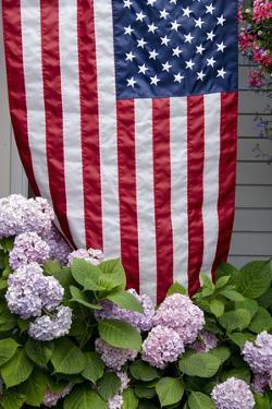 Hydrangeas with American Flag, Block Island, Rhode Island, USA by Cindy Miller Hopkins
