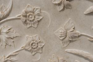 India, Agra, Taj Mahal. Detail of Carved Marble with Flower Design by Cindy Miller Hopkins