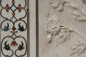 India, Agra, Taj Mahal. Detail of Marble Inlay with Carved Flowers by Cindy Miller Hopkins