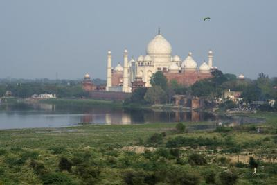 India, Agra. Taj Mahal from the Red Fort of Agra. Sandstone Fortress by Cindy Miller Hopkins