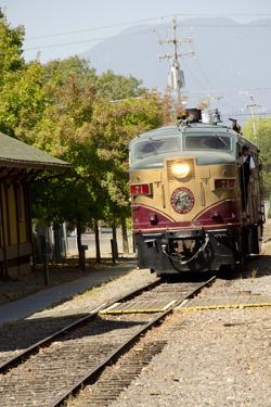 Napa Valley Wine Train in Train Station, California, USA by Cindy Miller Hopkins