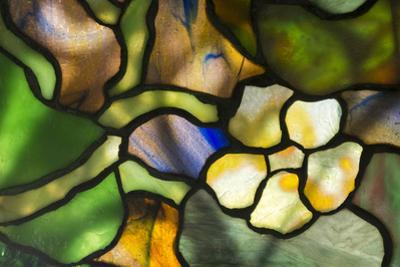 New York, Tiffany stained glass lamp shade. by Cindy Miller Hopkins