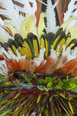 Papua New Guinea, Tufi. Detail of Feather Ceremonial Headdress by Cindy Miller Hopkins