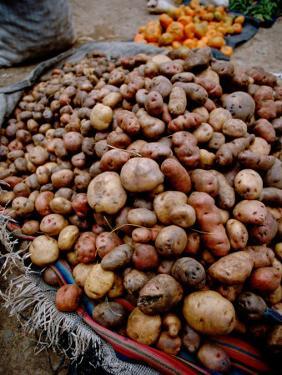 Potatoes in Local Farmer's Market, Ollantaytambo, Peru by Cindy Miller Hopkins