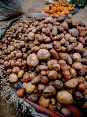 Potatoes in Local Farmer's Market, Ollantaytambo, Peru by Cindy Miller Hopkins