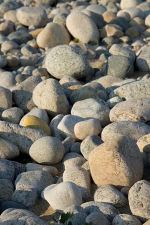 USA, Massachusetts, Gosnold. Rocky shoreline of Cuttyhunk island. by Cindy Miller Hopkins