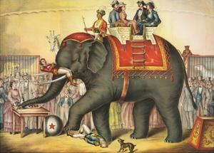 Circus Elephant and Riders