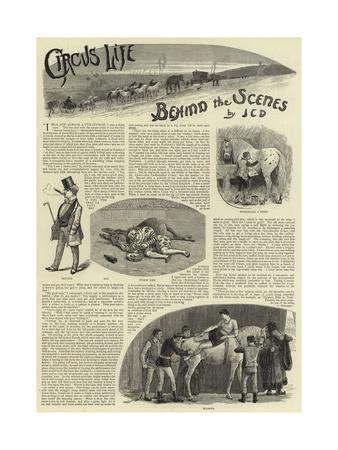 https://imgc.allpostersimages.com/img/posters/circus-life-behind-the-scenes_u-L-PVMSFW0.jpg?p=0