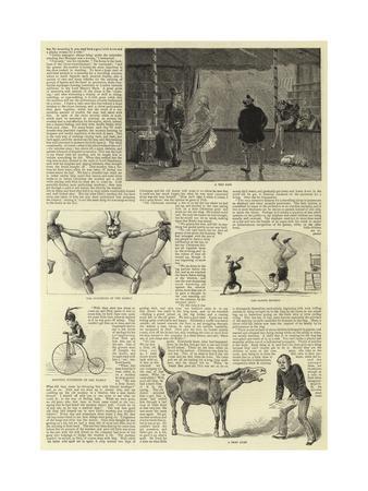 https://imgc.allpostersimages.com/img/posters/circus-life-behind-the-scenes_u-L-PVMSGH0.jpg?p=0