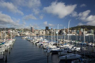 https://imgc.allpostersimages.com/img/posters/city-centre-and-waterfront-from-chaffers-marina-wellington-north-island-new-zealand-pacific_u-L-PQ8QXZ0.jpg?artPerspective=n
